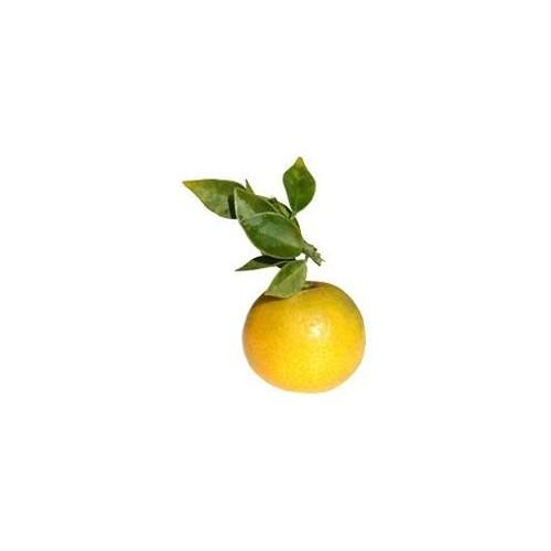 Ulei esential de portocal amar -petit grain - 10ml