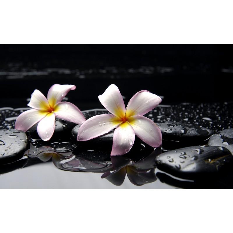 Lamaie , floare exotica parfumant cosmetic - 30gr